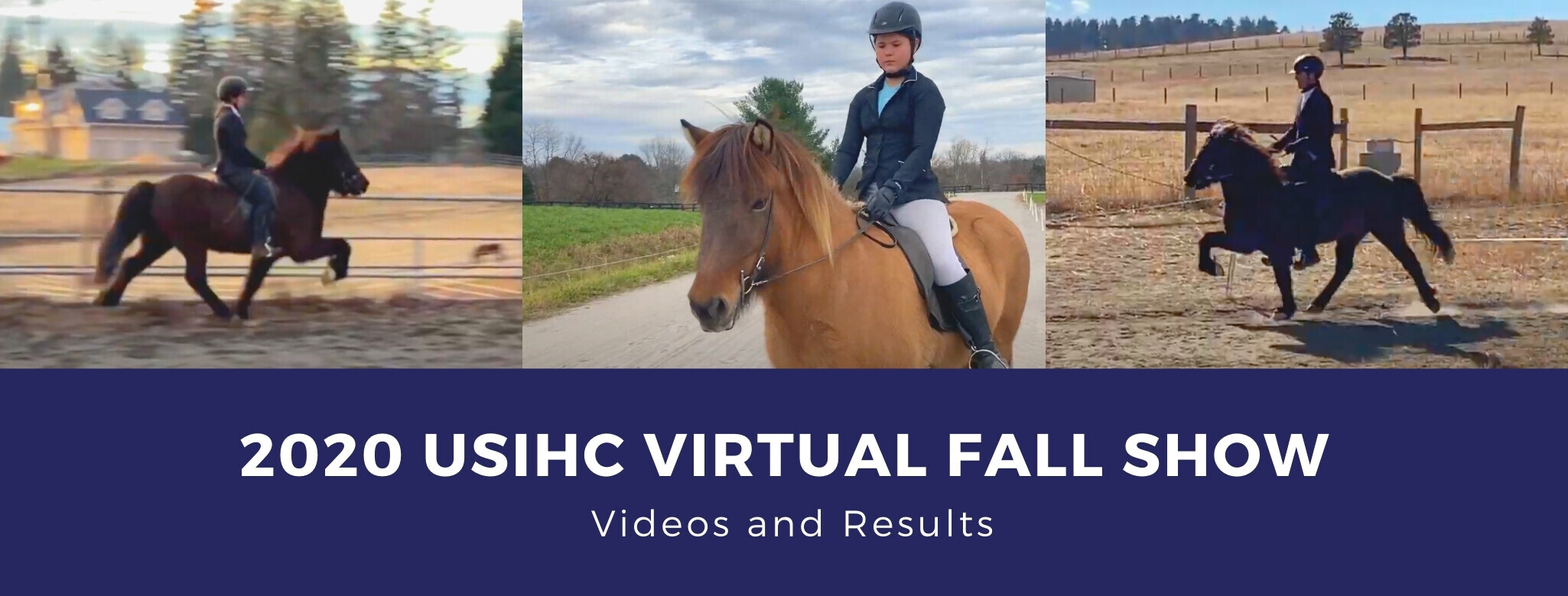 USIHC Virtual Fall Show Videos and Results