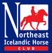 Northeast Icelandic Horse Club (NEIHC)
